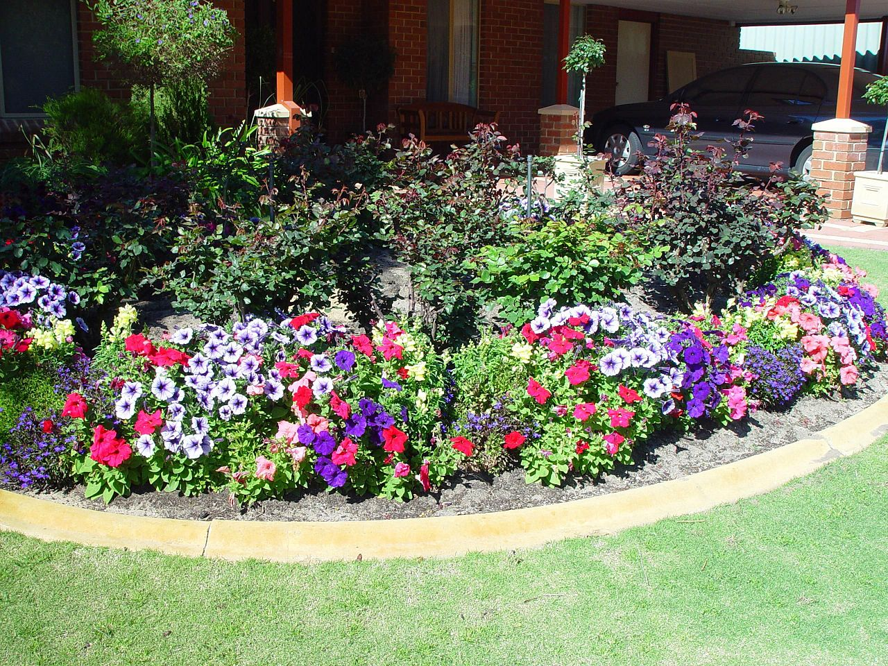 A flower garden with a wide variety of purple, red, and white blooms